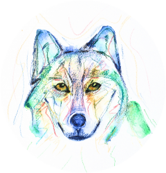 cropped-mystic-wolf-soulcrafts-circular-logo4.png